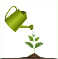 Young plant with watering can and water drops.vector