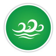 Wave on green button icon,clean vector