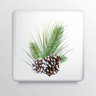 Square Icon With Three Evergreen Sprigs and Two Pine Cones