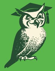 Wise Owl Wearing Mortarboard