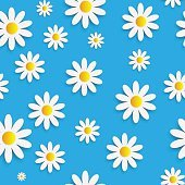 Flora Daisy Seamless Pattern Design Vector Illustartion