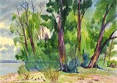 The trees on the banks of the river in the summer, Painting, Watercolor