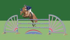 professional showjumper