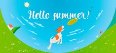 Hello summer banner with dog catching frisbee