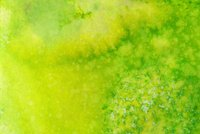 Bright colorful yellow and green hand painted background
