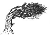 drawing of a bent tree