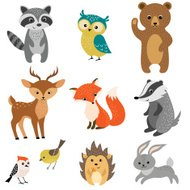 Animales del bosque lindo