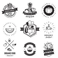 Organic food logo vintage vector set. Hipster and retro style.