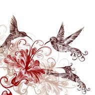 Floral background with hummingbirds and hibiscus flowers