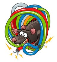 Cartoon Ratte Käse Essen premium clipart - ClipartLogo.com