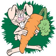 rabbit with large carrot