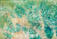 Green and beige spotted hand painted background