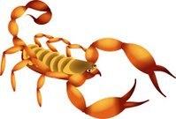 Cartoon Scorpion