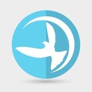 Dove of Peace Vector illustration