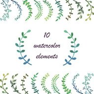 Watercolor  floral collection with leaves and flowers