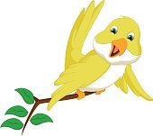 cute yellow bird cartoon