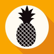pineapple icon on white circle with a long shadow