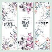 Collection floral banner. Boutique bio. Illustration vectorielle