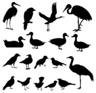 Silhouette of Birds (vector Set#2) seamless background