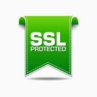 SSL Protected Green Vector Icon Design