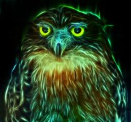 Digital drawing of a owl