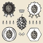 Hop craft beer vintage sign symbol label element