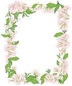 Vintage vector vertical invitation card. Colorful blooming flowers of saponaria.