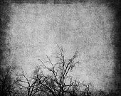 Aged paper texture with grunge tree
