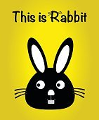 This is rabbit, bunny vector, cute rabbit colorful. yellow background