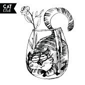 funny cat character