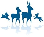 Deer Family - Silhouettes