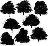 Tree silhouette collection 4