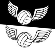 Volleyball with wing.