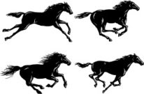 Silhouettes of Horses Running