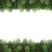 Christmas borders from fir branches