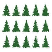 Conifer Trees Set on the white background for Making Forest