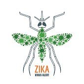 Zika virus concept. Vector illustration of mosquito.