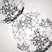 Molecular structure, network connection