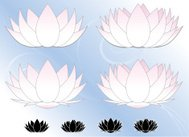 Lotus Flowers, Water Lilies Set (Pink, White) with Icons, Backgr