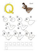 Drawing tutorial. Game for letter Q