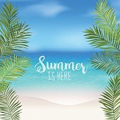 Tropical Background. Palm Leaves. Sea View Background. Vector Background