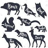 Wild animals silhouettes with lettering: boar, pigeon, owl, squirrel