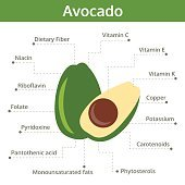 avocado nutrient of facts and health benefits, info graphic vegetable