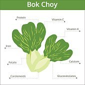 bok choy nutrient of facts and health benefits, info graphic