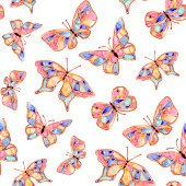 Watercolor butterfly summer spring
