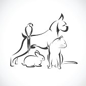 Vector group of pets