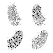 Set of  feather silhouettes on a white background.
