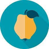 Quince flat icon. Tropical fruit