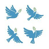 Flying dove vector sketch set. Dove of Peace.