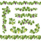 Seamless Background Pattern Vine